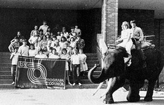 Elephant on campus