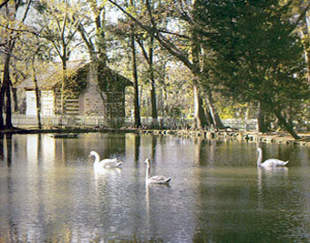 Sam Houston Park Pond