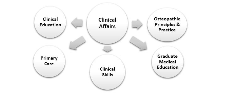 Clinical Affairs: Clinical Education, Clinical Skills, Graduate Medical Education, Osteopathic Principles & Practice, and Primary Care