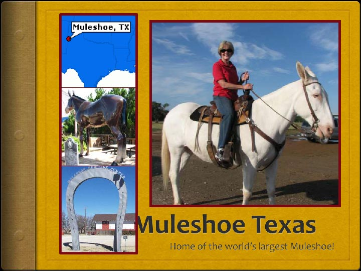 Muleshoe Texas by Lauren Novak