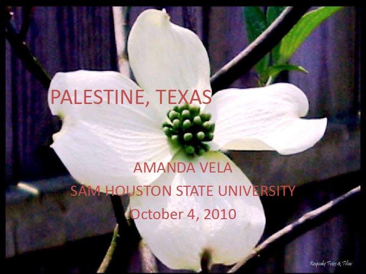 Palestine, Texas by Amanda Vela