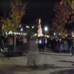 Tree lighting 013