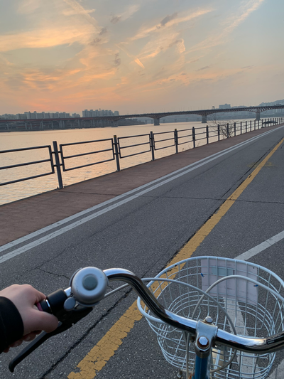 thumbnail view of Sense of Place - Kate Munoz - South Korea - Fall 2019 - Christmas by the Han River - Rented bikes and biked by the Han River on my last full day in Korea