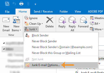 RibbonJunkMailOptions