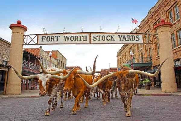 FortWorth(Cowtown) copy