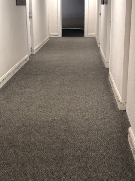 Elliott Hall Carpet Before