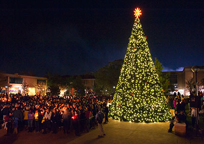 The Tree of Light stands above all else on campus - lighting up the night and all the people that surround it.