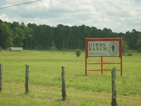 gibbs ranch