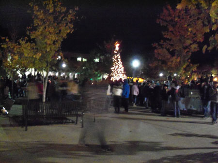 Tree lighting 013