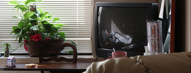tv and plant