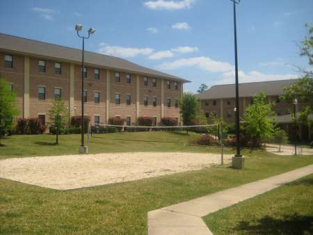 Volleyball court by bearkat village