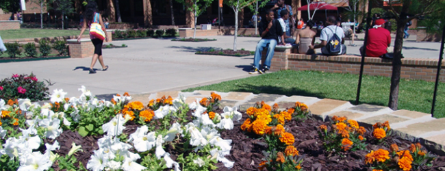 flowers and students on campus