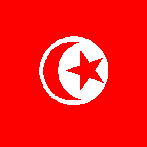 tunisia_flag- crop